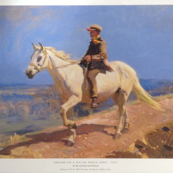 Shrimp on a Welsh Pony - Copyright the estate of Sir Alfred Munnings